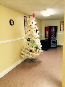 Entergy Decorates Trees 12-14 2
