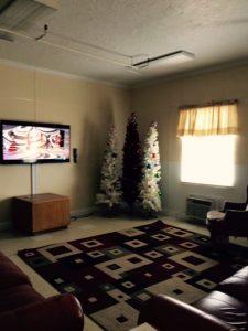 Entergy decorates trees 12-14 3